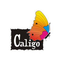 Caligo Safe Wash Relief Ink